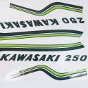 Déco Kawasaki 250S1