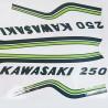 Déco Kawasaki 250 S1